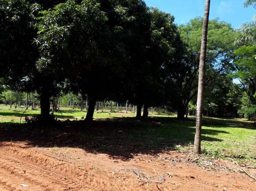 Terrenos en Areguá Valle Pucú - 4