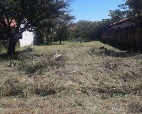 Limpieza de terrenos baldíos