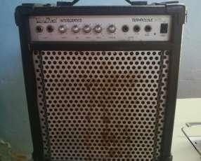 Amplificador para bajo 30w