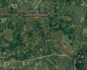 17 hectáreas en Piribebuy