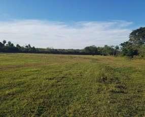 Terreno de 10 hectáreas en Luque