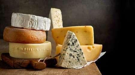 Comienza tu negocio de quesos con video clases - 6