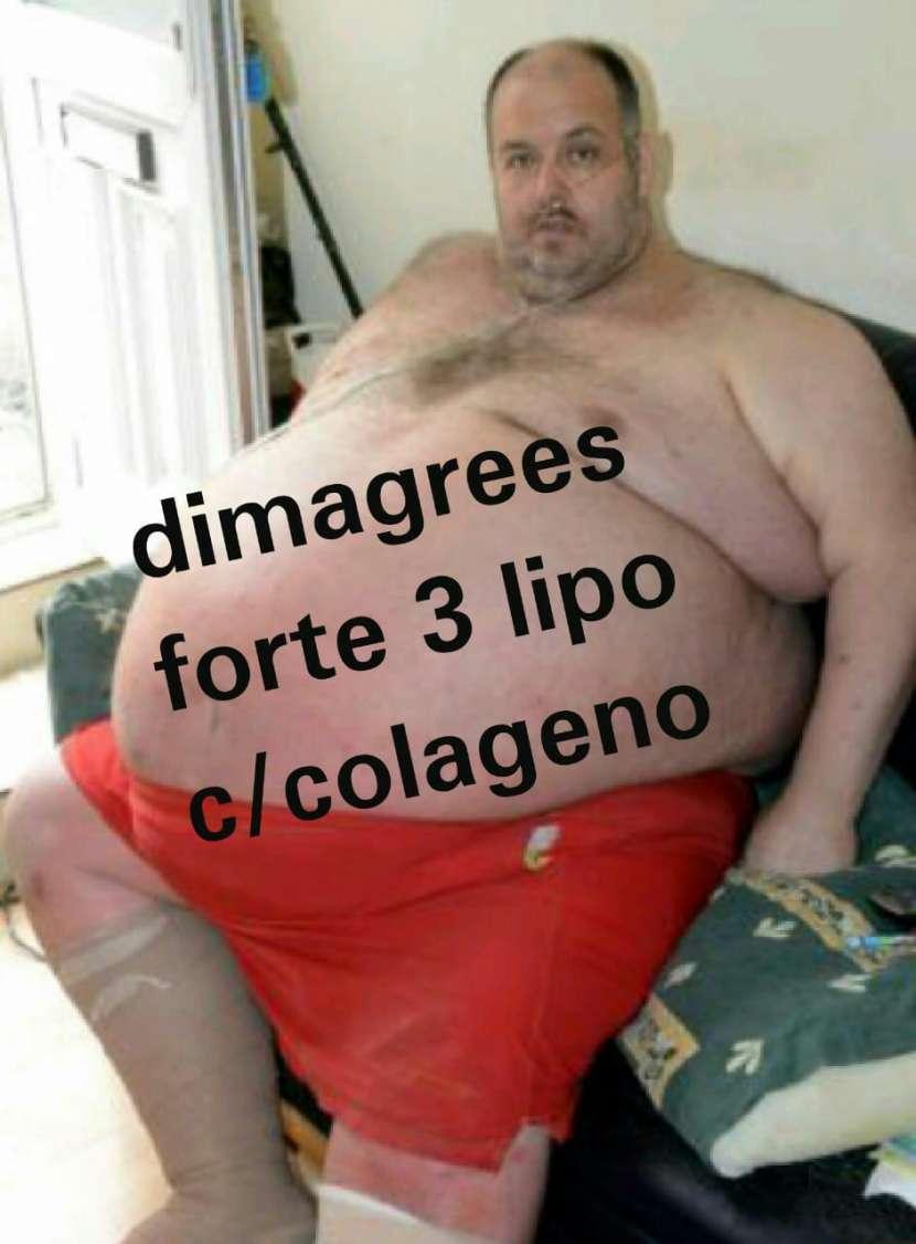 Dimagrees forte 3 lipo c/ colágeno adelgazante
