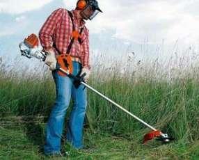 Servicio de limpieza de patios y terrenos baldíos