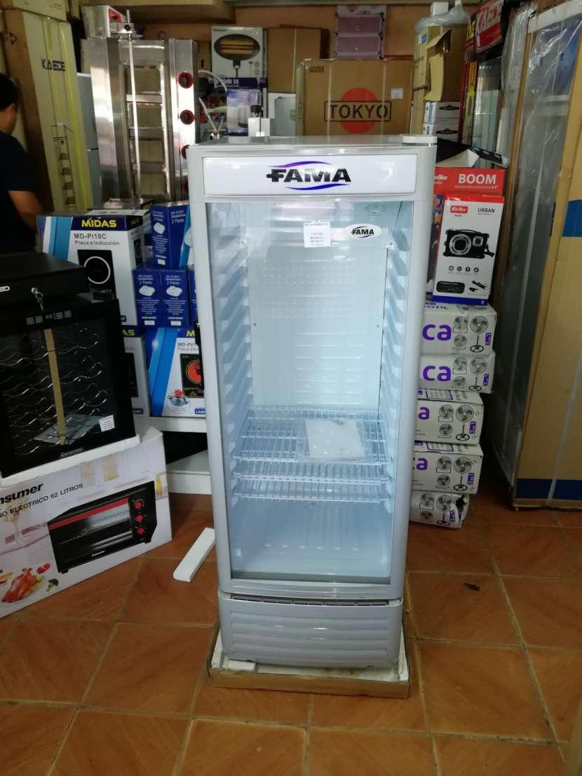 Visicooler Fama 170 litros - 1