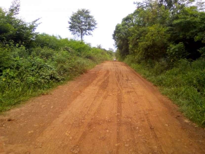 34 hectáreas en Itacuá distrito de Encarnación - 1