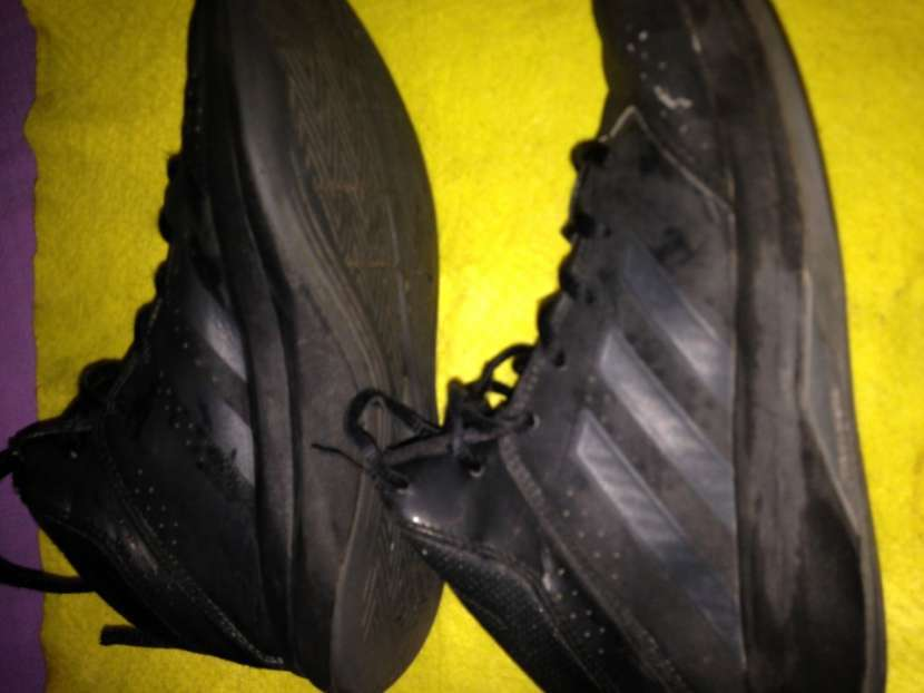 Champion Adidas - 4
