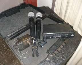 Micrófonos inalámbricos profesional