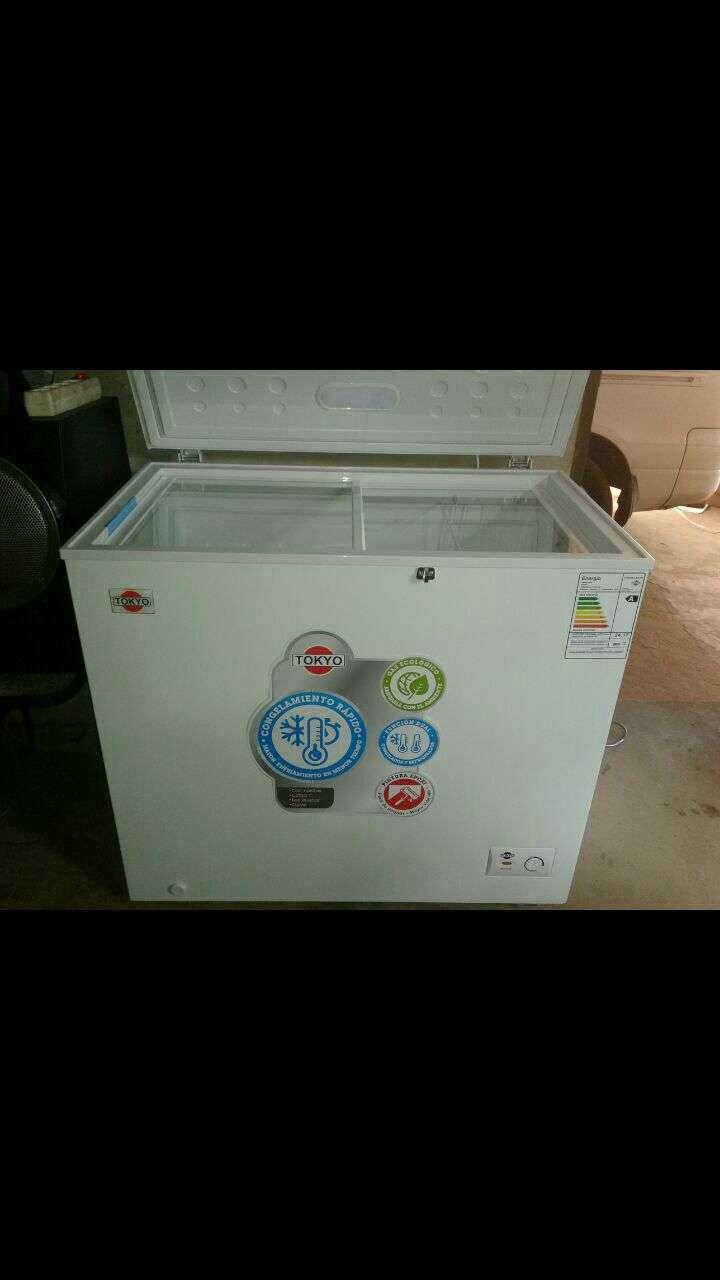 Congelador Tokyo de 230 lts - 0