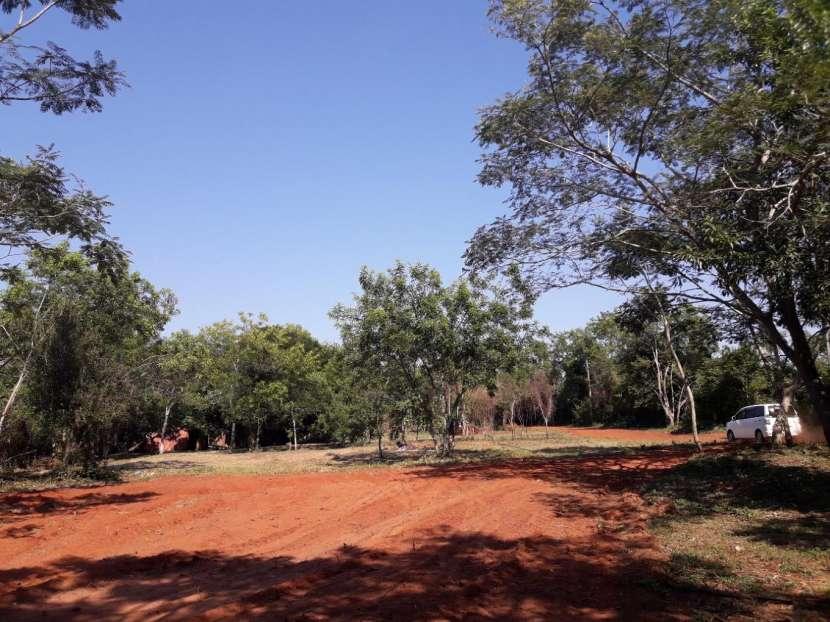 Terrenos en J. Augusto Saldivar Km 24 - 4