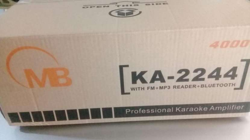 Amplificador profesional 220 Voltios - 1