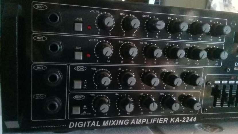 Amplificador profesional 220 Voltios - 2