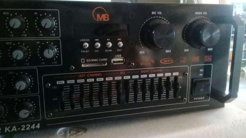 Amplificador profesional 220 Voltios - 3