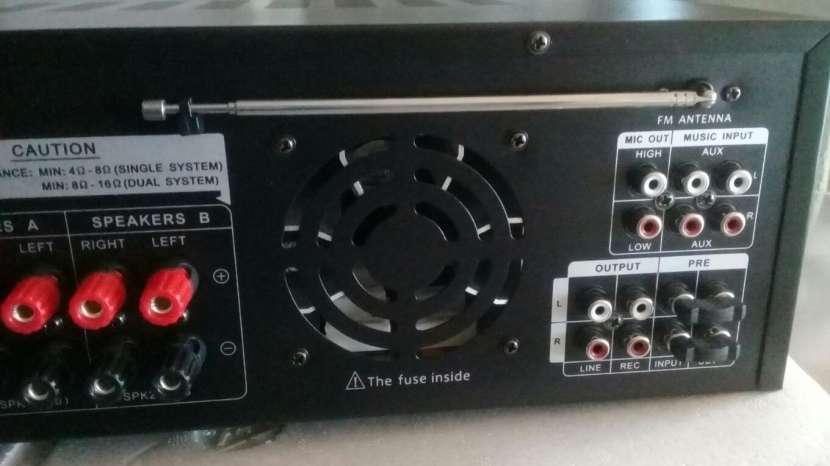 Amplificador profesional 220 Voltios - 4