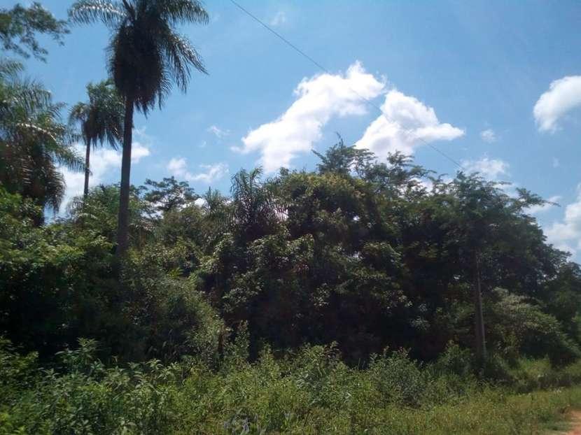Terreno de 3 hectáreas San Bernadino - 2