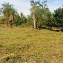 Terreno en Itauguá - 0