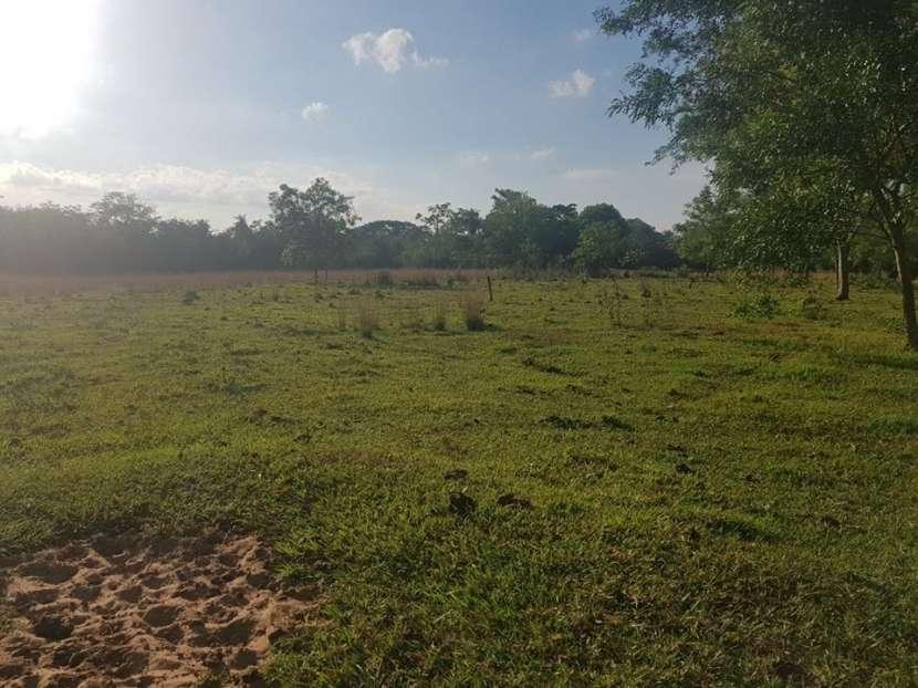 Terreno de 174 hectáreas en Yaguarón A1435 - 5