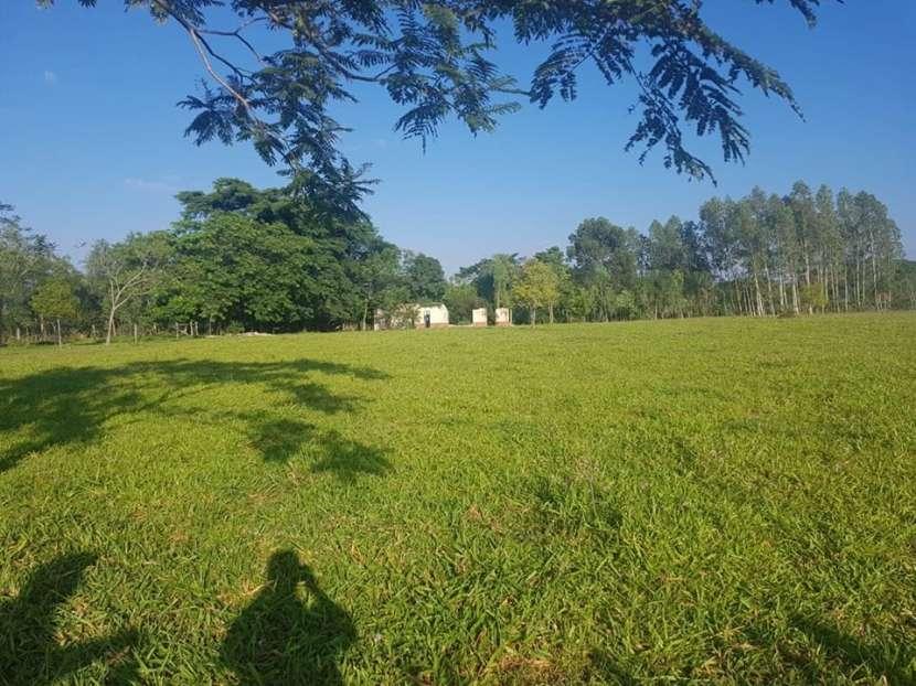 Terreno de 174 hectáreas en Yaguarón A1435 - 4