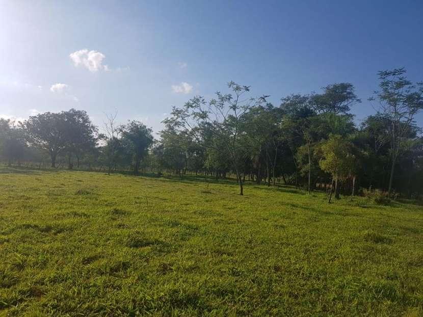 Terreno de 174 hectáreas en Yaguarón A1435 - 1