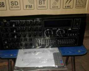 Amplificador profesional