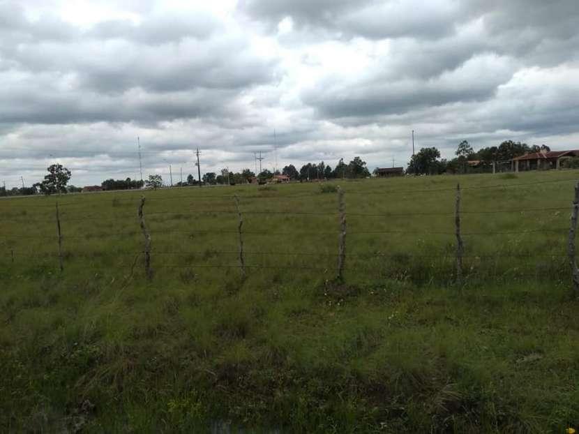 3 terrenos en Villa Florida E2137