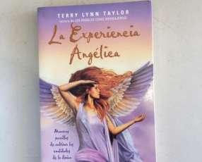 LIBRO- La Experiencia Angelica