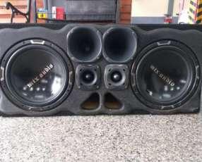 Caja de audio MTX