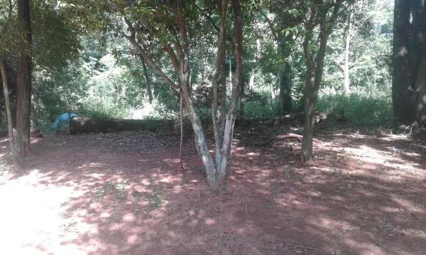 4 Terrenos en Ypané Barrio Centro - 1