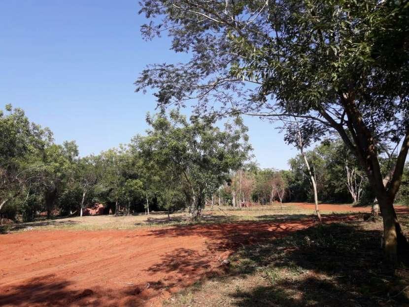 Terrenos en Capiatá Ruta 2 Km 24 - 3