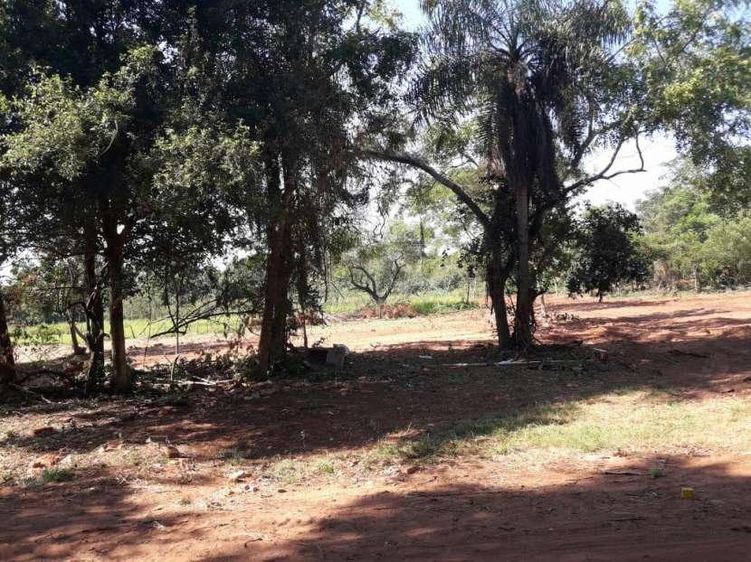 Terrenos en Capiatá Ruta 2 Km 24 - 7
