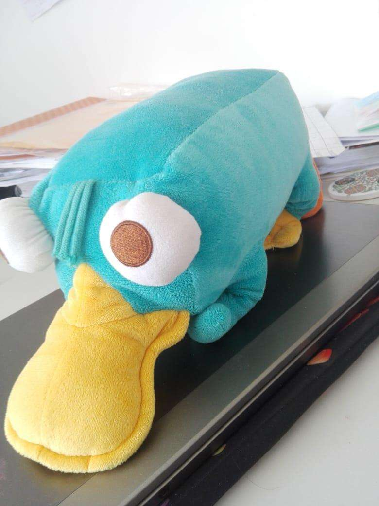 Peluche Perry el ornitorrinco - 2
