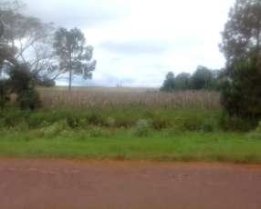 Terreno de 6 has. s/ruta asfaltada en Capitán Miranda