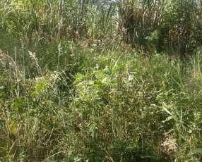 Campo de 62 hectáreas en Caaguazú
