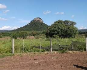 Campo de 8 hectáreas
