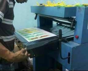 Máquina para fabricar blister selladora