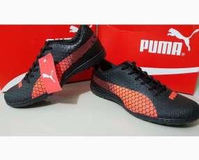 Champion Puma