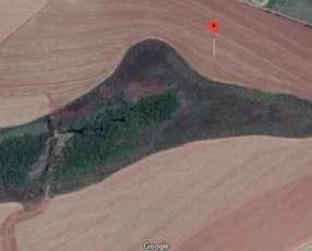 Campo de 600 hectáreas en Itakyry - Alto Paraná