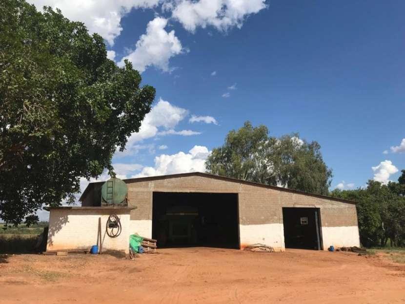 Campo 600 hectáreas en Itakyry Alto Paraná - 4