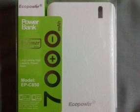 Cargador portátil Ecopower