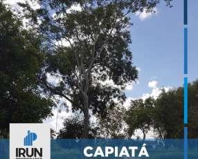 Terrenos en la ciudad de Capiatá fracción los arboles