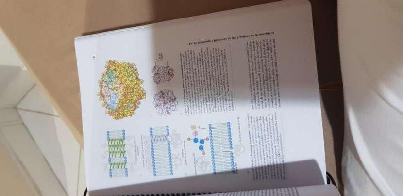 Libros de cursillo de medicina UNA - 2