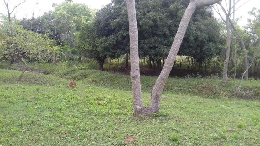 Terreno cerca del desvío Piribebuy km 66 - 3