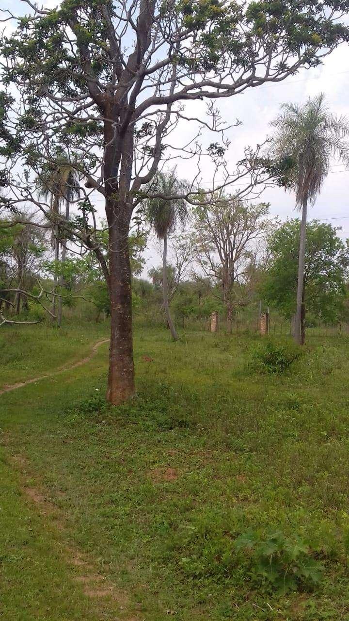 Terreno cerca del desvío Piribebuy km 66 - 7