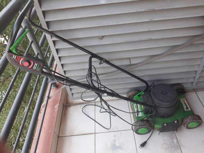 Kit jardinero - 1