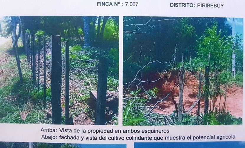 Terreno de 9,5 hectáreas zona Chololo - 1