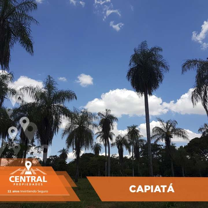 Terrenos en Capiatá - 0