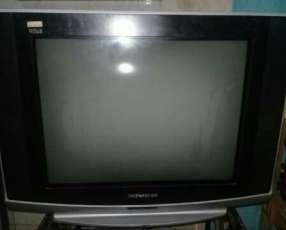 TV de 29 pulgadas pantalla plana