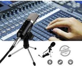 Micrófono condensador para estudio Kolke 271