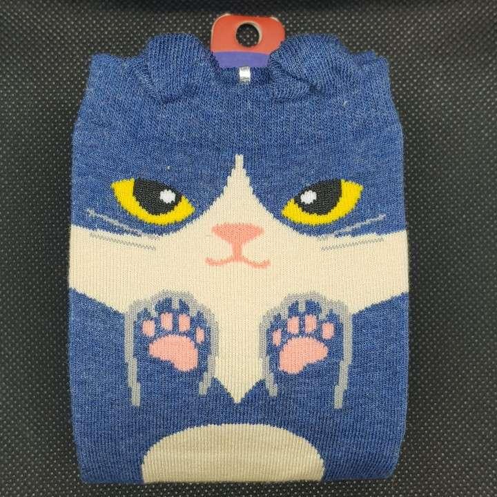 Medida de gatito para el frío - 1