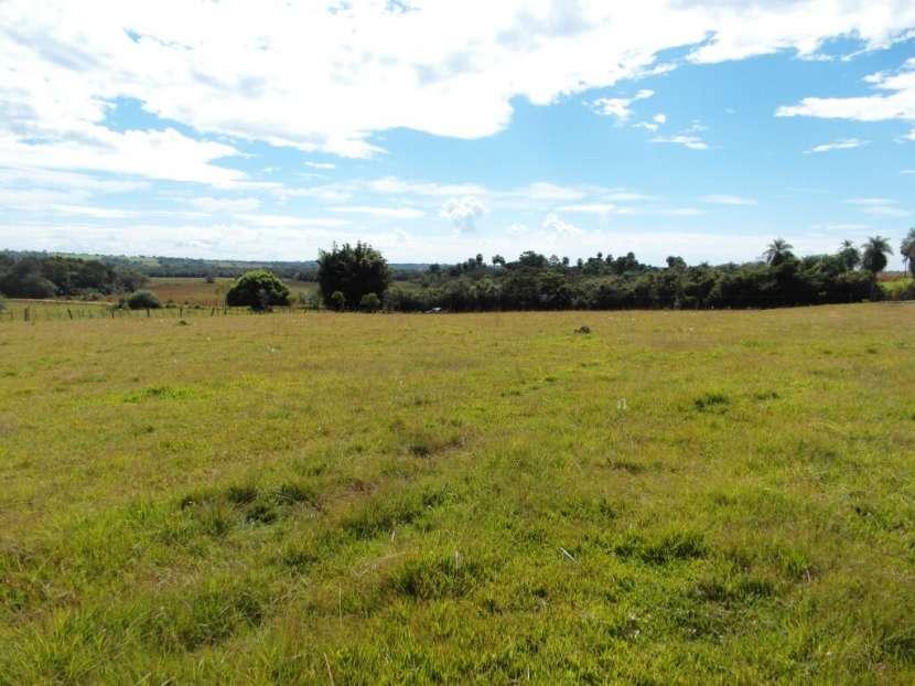 Terreno de 12 hectáreas - 0
